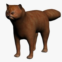 3ds max red persian cat