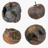 Rotten Decayed Apples Collection Set Detail