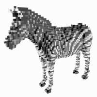 3d voxel zebra
