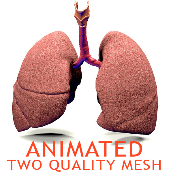 icon lungs.jpg