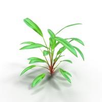 3ds max anubias aquarium plant