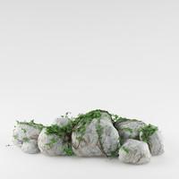 plant rocks max