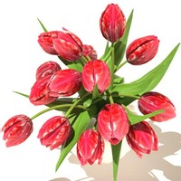 tulips_bouquet v3 02