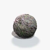 Moss Woodland Seamless Texture