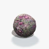 Moss Seamless Texture