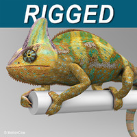 chameleon color 3d max
