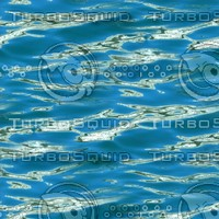 Ocean water 44