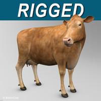 Cow ( Limousine )