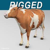 Cow ( Ayrshire )
