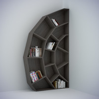 Spider web bookcase