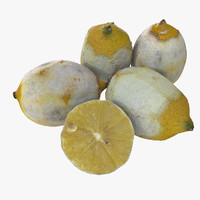Dry Realistic Peeled Lemon Set