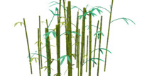 3ds bamboo thicket