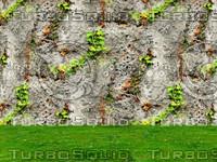 Stone wall 51