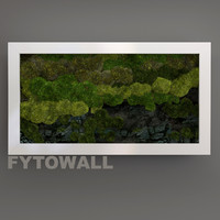 3d model fytowall