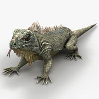 3ds max iguana lizard