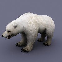 3d bear cartoon toon model