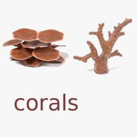 3ds max corals