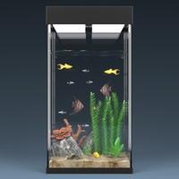 maya aquarium equipped decorations