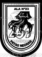 Ala 23 Group 1 Decal