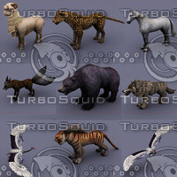 3d model animals bear fox