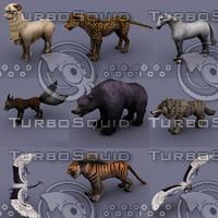 3d model animals bear fox