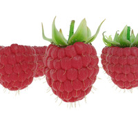3d raspberries fruit model