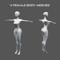 3d model of female body meshes