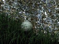 Grass, ball and wall