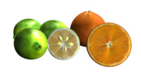 citrus fruits 3d obj