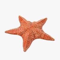 3dsmax sea star