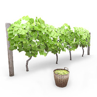 3d model grapevine basket grapes