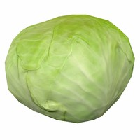 cabbage - obj