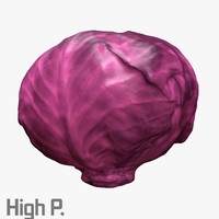 3d red cabbage model