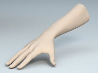 female arm 3d max