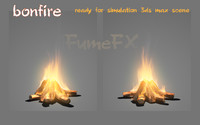 Bonfire ready for simulation fumefx scene