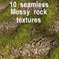 Mossy Rock Collection 6