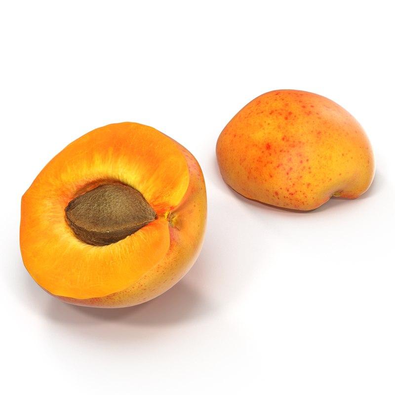 Apricot Cross Section 3d model 01.jpg
