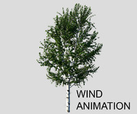 3ds max birch tree animation wind