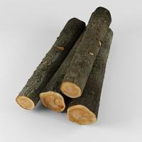 3d log model