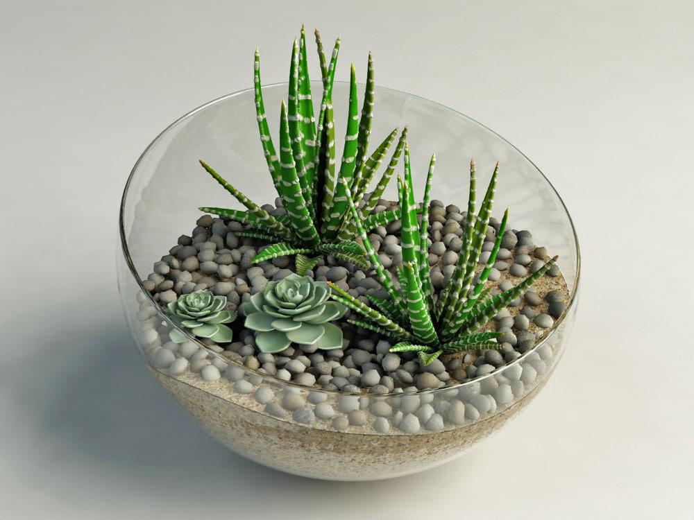 3dsmax cacti glass vase. Black Bedroom Furniture Sets. Home Design Ideas