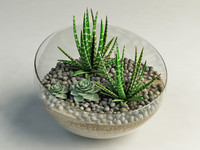 3dsmax cacti glass vase