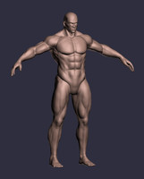 3d male character a-pose