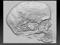 skull stone 3d obj
