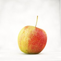 free realistic apple 3d model