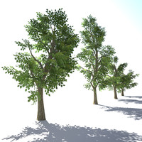 3ds max trees polys