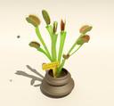 carnivorous plant 3D models