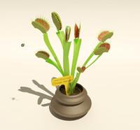 Carnivorous Plant (Dionaea muscipula)