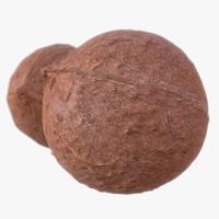 3d coconut scanned polys model