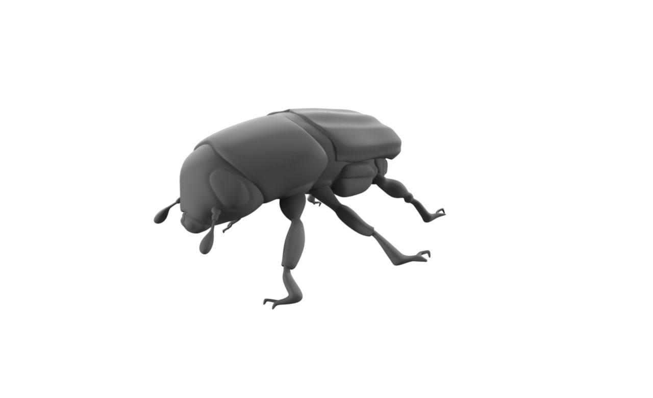 beetle_01.png