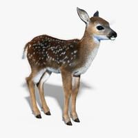 max fawn baby deer fur